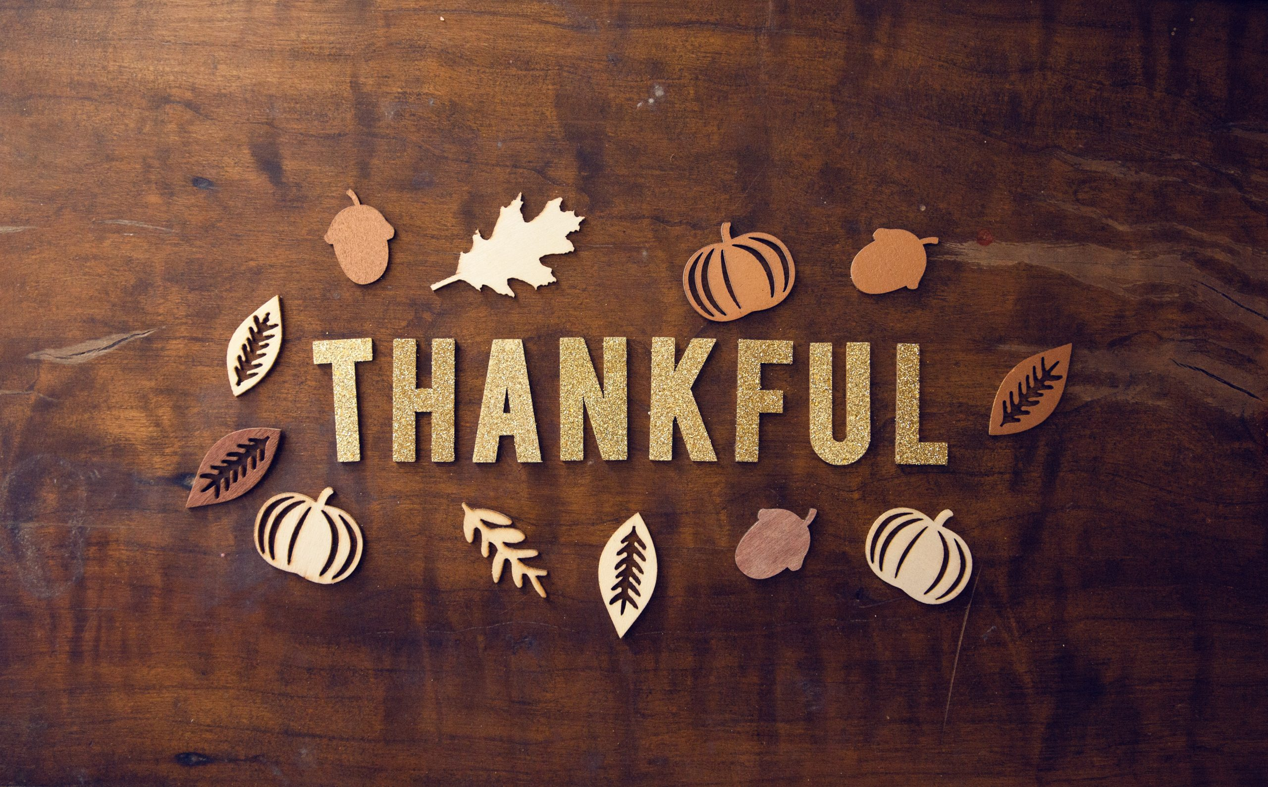 Thanksgiving Edition: Thankful for Starting Over and Divorce